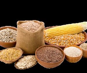 Grains1-removebg-preview