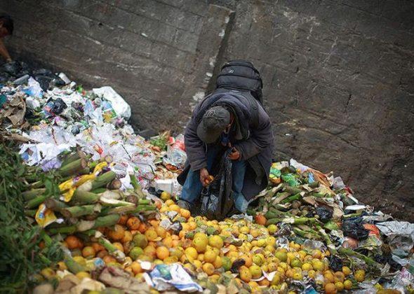 food-wastage3
