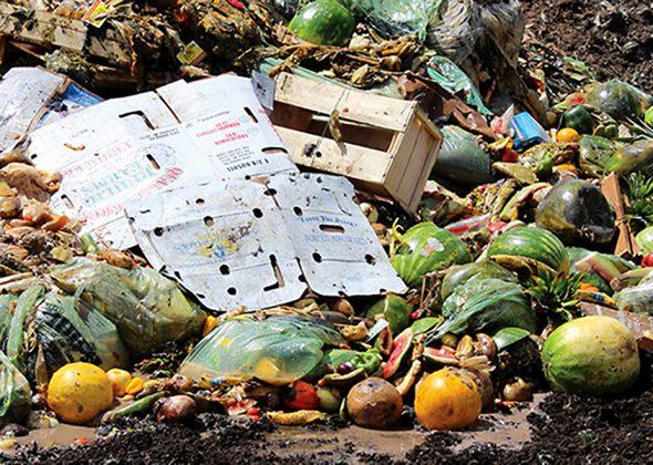 food-waste_r